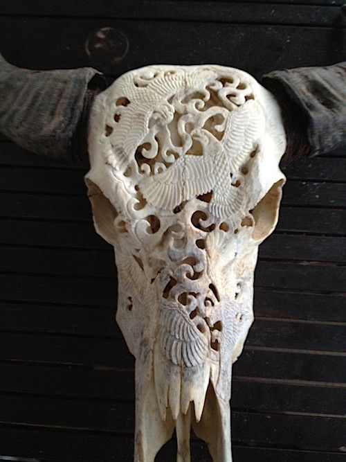 $369.00 / Awesome longhorn hand carved buffalo skull head / Fireplace decor / Country western bar decor. You can order this buffalo skull at Carvedskulls.com.