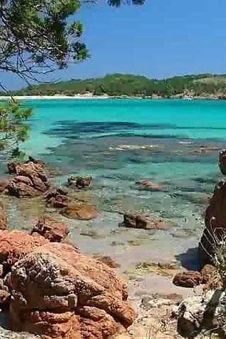 Un petit coin Corse ... #corse #visite #voyage #europe #culture #activites #loisirs #guide #france #mer #plage #baignade