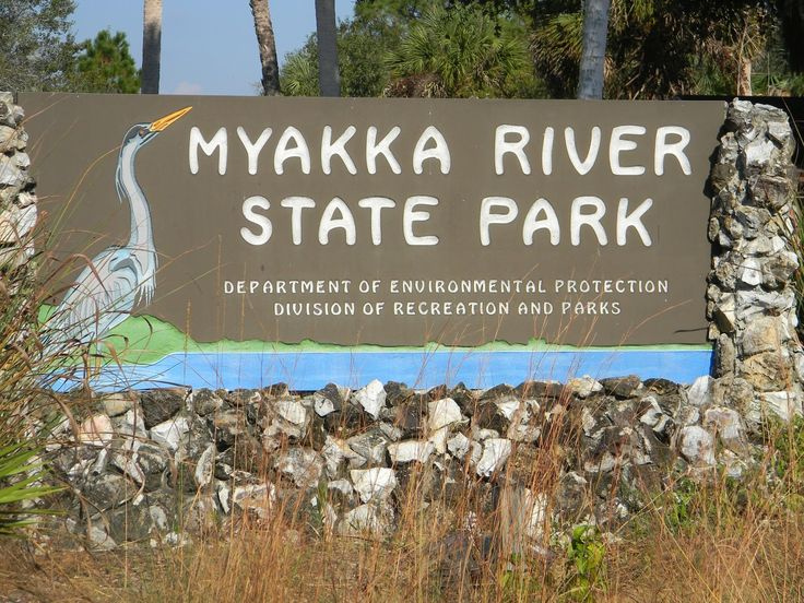 "Best National Parks in Florida | The ""Unknown"" Florida: Myakka River State Park - Sarasota, FL"