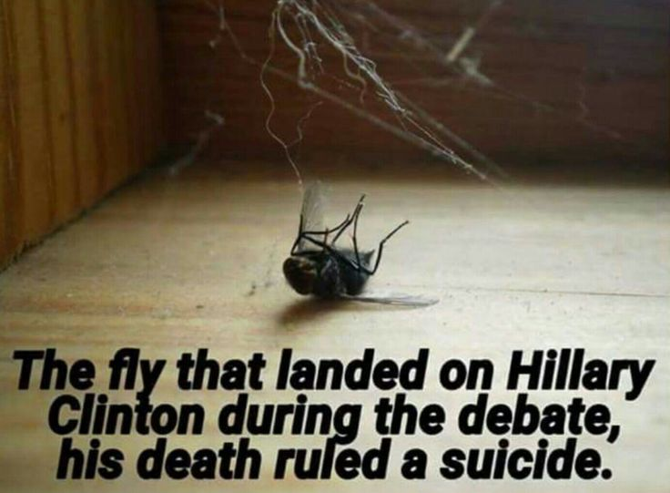 Another victim of Hillary.