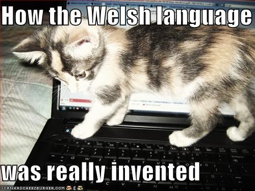 Welsh is a very hard language to learn......so others say!!!
