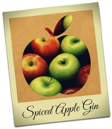 Winter Warmer - Spiced Apple Gin | Infusapalooza