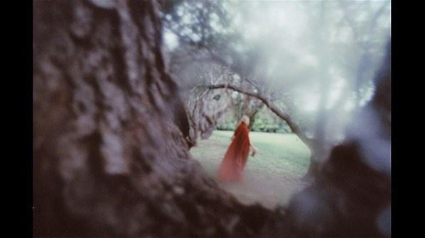 Alison Scarpulla - Un viaje existencial con fotos reveladas en ácido y vino.