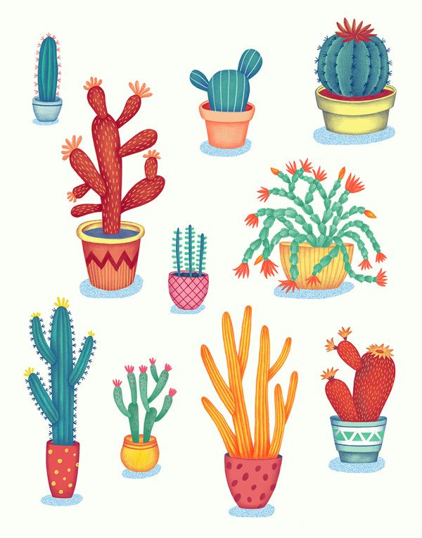 Cactus! by Jessica HJ Lee, via Behance