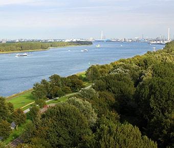 Geniet van de enorme schepen die voorbij varen op de Nieuwe Waterweg | Rotterdam | The Netherlands