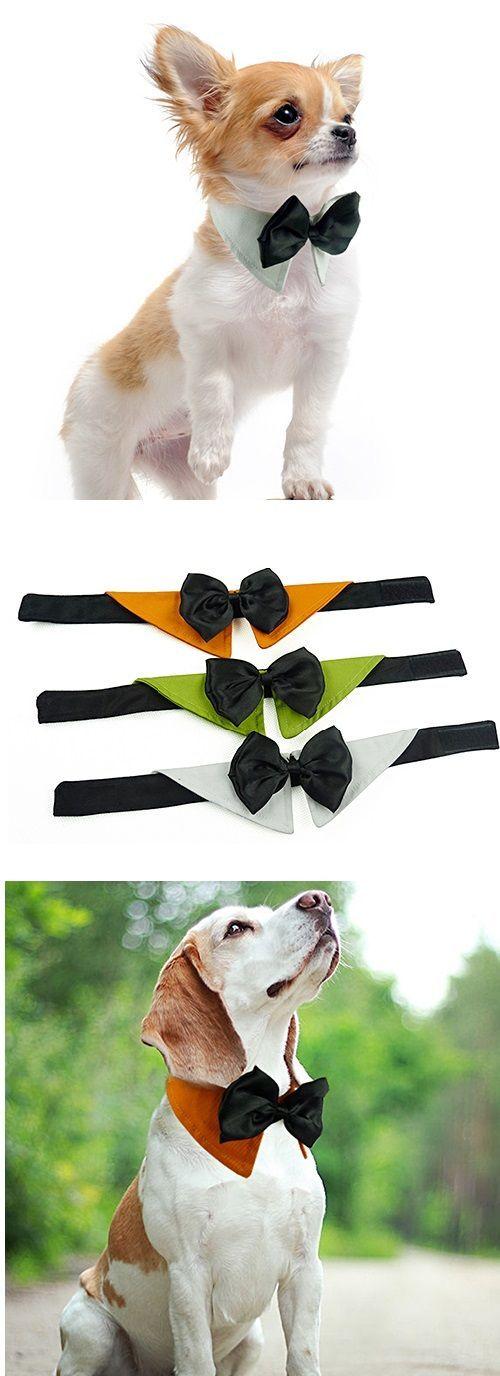 Convierte a tu mascota en un  miembro elegante de tu familia. ¿Qué te parece? Encuentra ese moño para tu #mascota en nuesta tienda online.