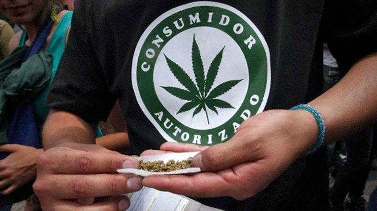 Uruguay usará marihuana para tratar esclerosis múltiple y casos de dolor crónico El subsecretario de Salud Pública, Leonel Briozzo, dijo que el gobierno está en la etapa final para la reglamentación del uso medicinal de la marihuana.El jerarca dijo que &ldquo...