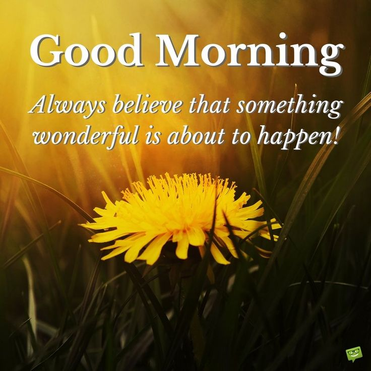 Goodmorning Quotes: Best 25+ Good Morning Wishes Ideas On Pinterest