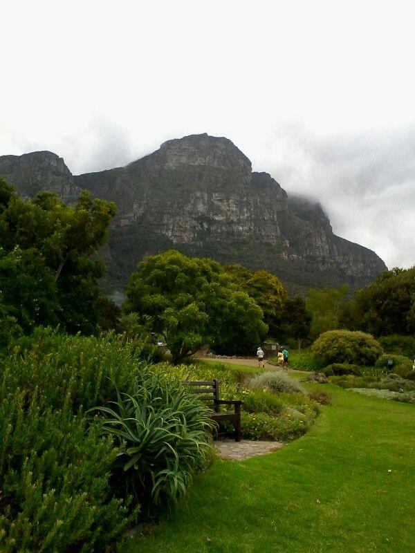 Kirstenbosch Botanical Gardens, Western Cape.