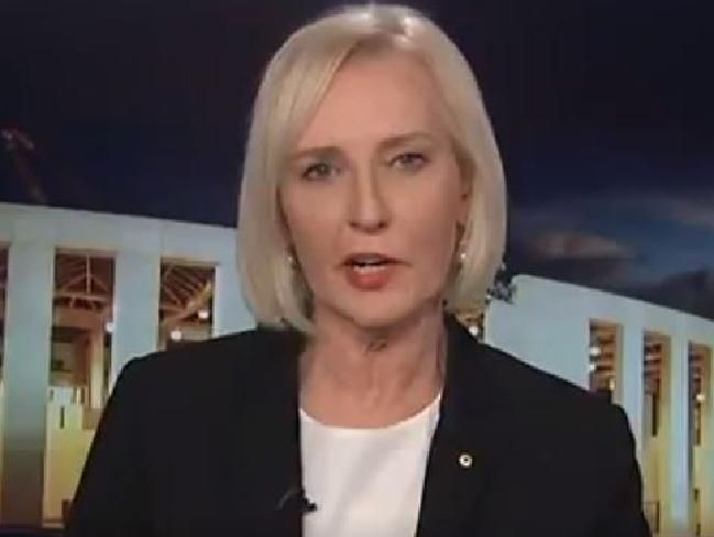 Cate McGregor on ABC's The Drum