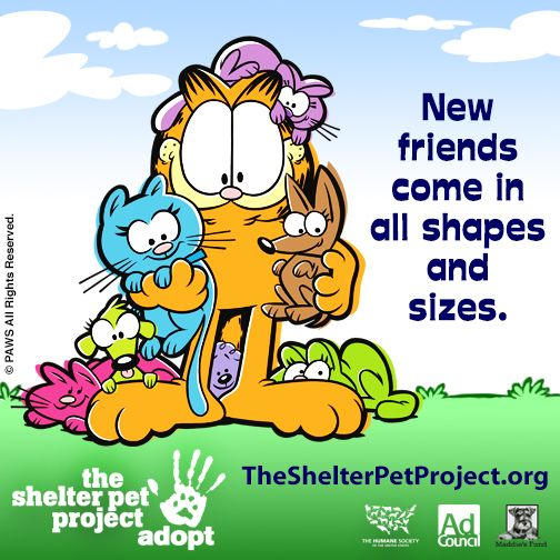 Shelter Pet Project ADOPT