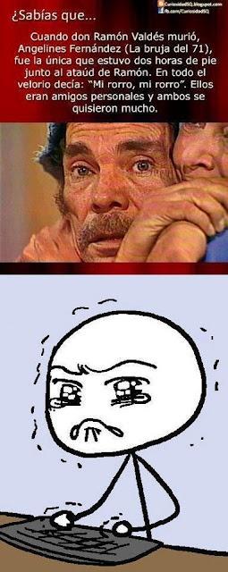 sabia que cuando don ramon murio(chavo del 8)... | memes