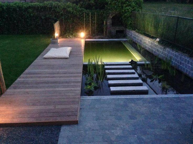 Zwemvijver by night met onderwaterverlichting, Kesters Tuinaanleg regio Leuven