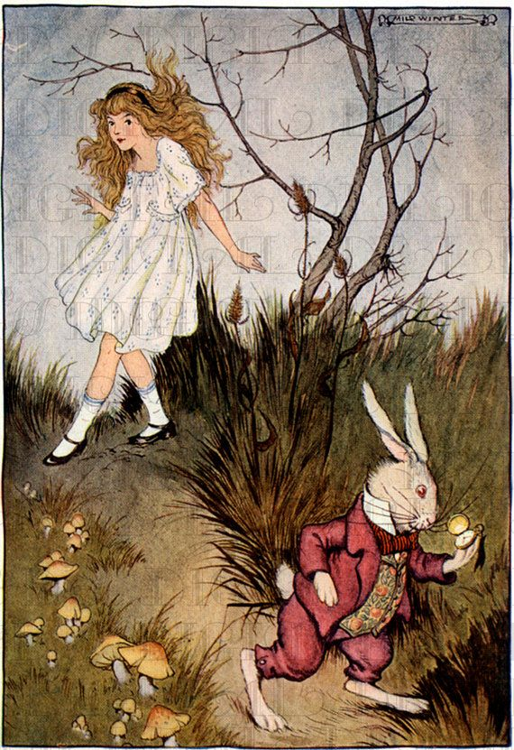 from first edition running white rabbit alice in