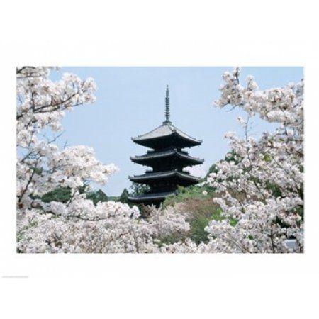 Cherry Blossoms Ninna-Ji Temple Grounds Kyoto Japan Canvas Art - (24 x 18)