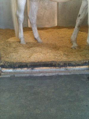 install long shop broom heads at stall entrances instead of a kick board to keep shavings in but is kick safe for horses.