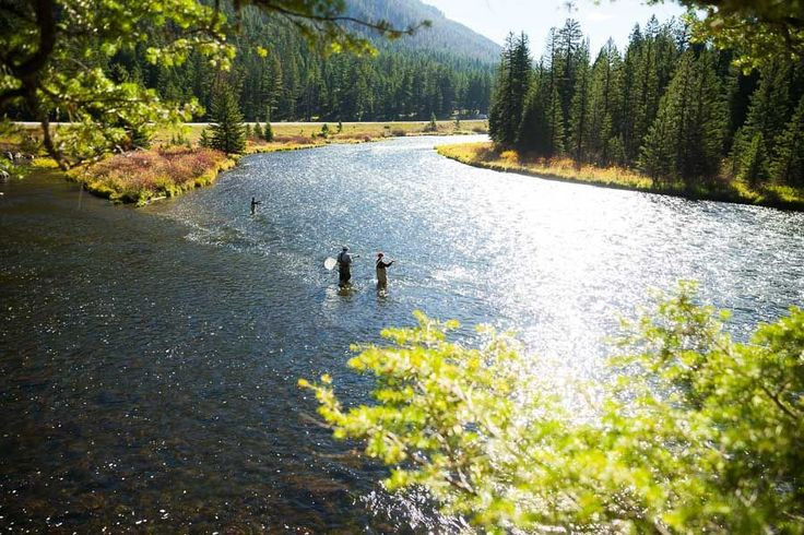 1000 ideas about fishing line on pinterest spinning for Madison river fly fishing