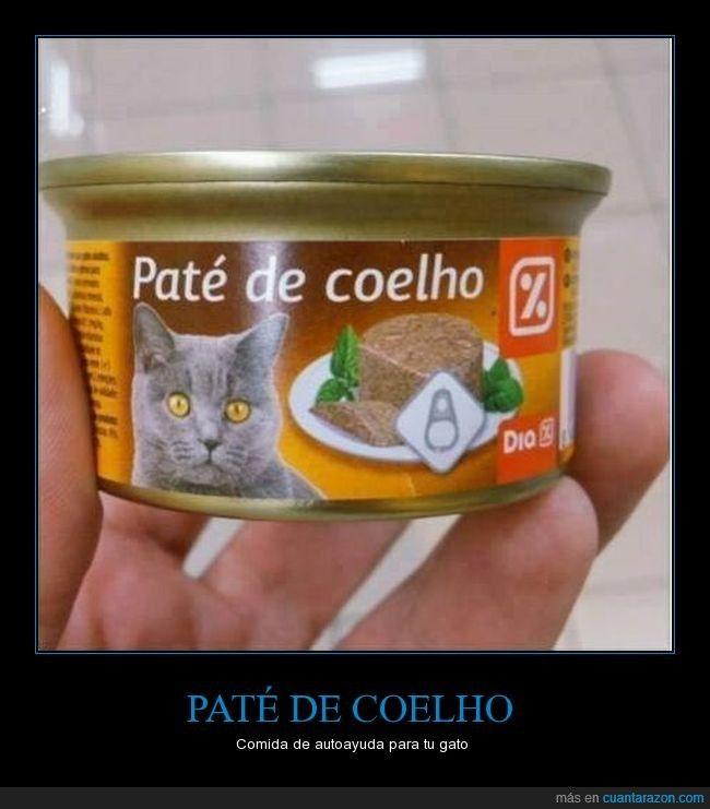 PATÉ DE COELHO - Comida de autoayuda para tu gato   Gracias a http://www.cuantarazon.com/   Si quieres leer la noticia completa visita: http://www.skylight-imagen.com/pate-de-coelho-comida-de-autoayuda-para-tu-gato/
