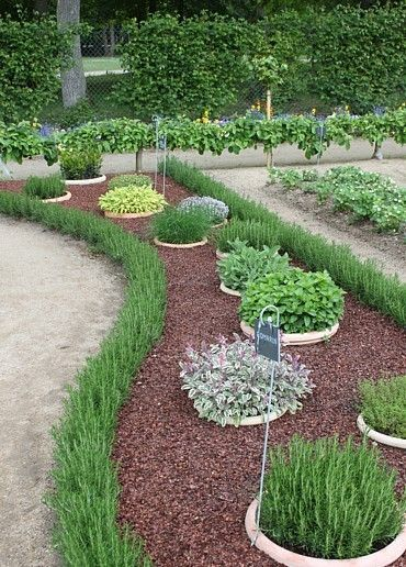 Buried pots contain aggressive herbs. Next spring? Prevent mint from taking over my entire garden!