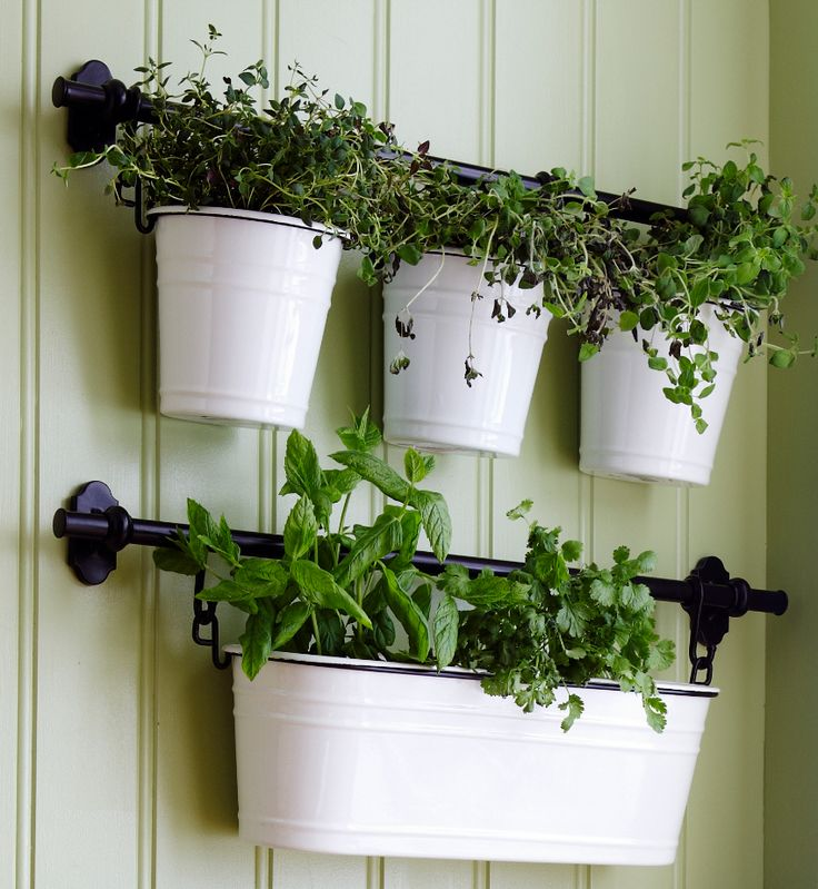 205 best images about kitchen on pinterest butcher for Indoor wall planters ikea