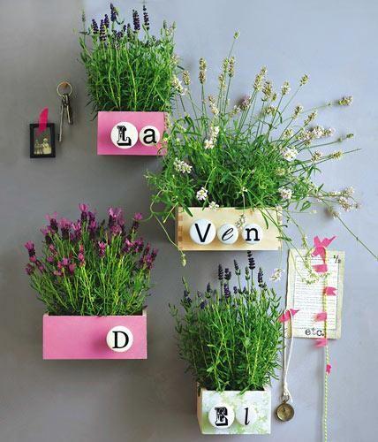 Schöne Deko-Ideen mit Lavendel