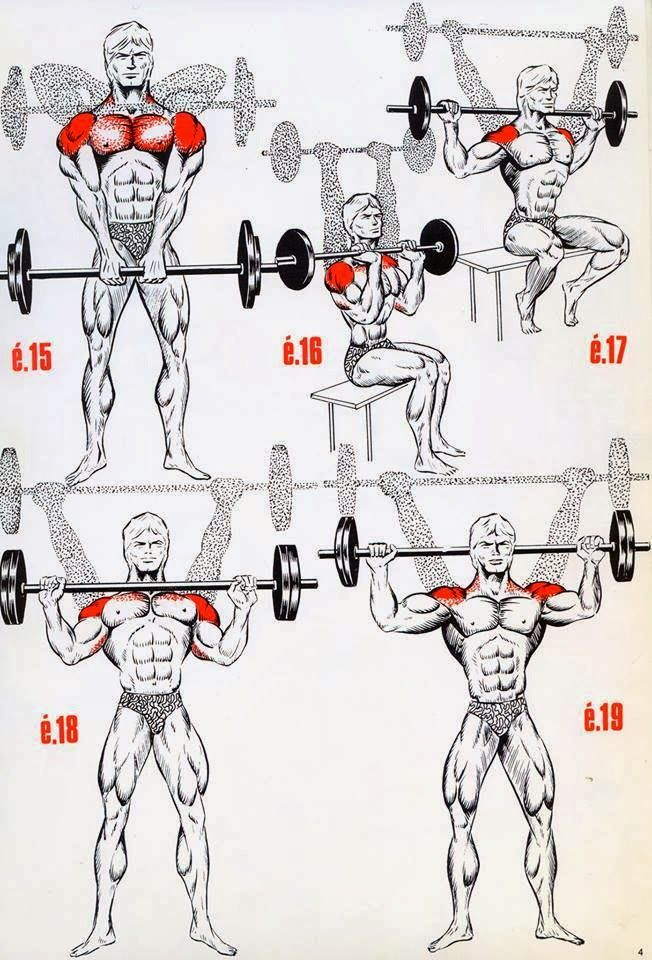 The Fitness era: BEAST shoulder workout!