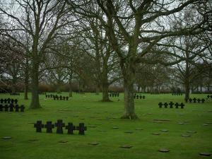 Cimetière allemand de La Cambe - Tombes du cimetière militaire allemand et arbres