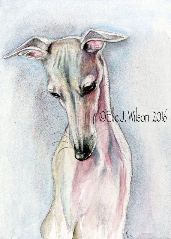 Italiaanse windhond hond Print