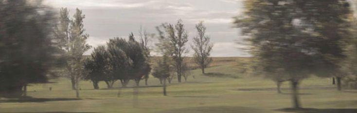 di Gianluca D'Andrea [Pubblichiamo alcuni testi dalla raccolta di Gianluca D'Andrea Transito all'ombra, in uscita in questi giorni per la nuova collana di poesia «Le Ali» di Marcos y Ma…