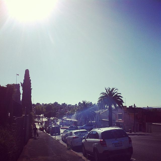 Even a at 8.30 in the morning the sun is starting to roast our little town #summer #mornings #worklife #walktowork #thislife #hot #veryhotday #ilovesun #december #palmtrees #street