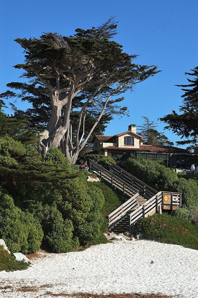 25 best ideas about carmel california on pinterest. Black Bedroom Furniture Sets. Home Design Ideas