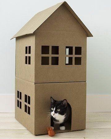 Любимый питомец оценит: мастерим из картонных коробок домик для котика.