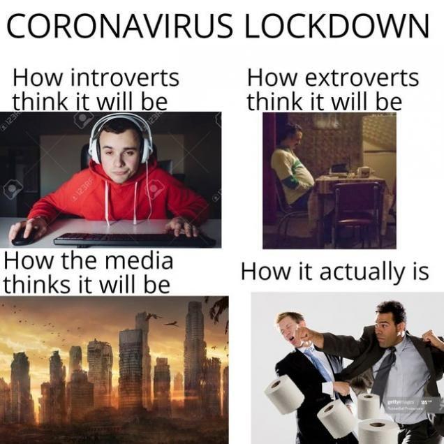 51 Funny Memes To Enjoy While You Slowly Go Insane Funny Memes Memes Introverted Thinking