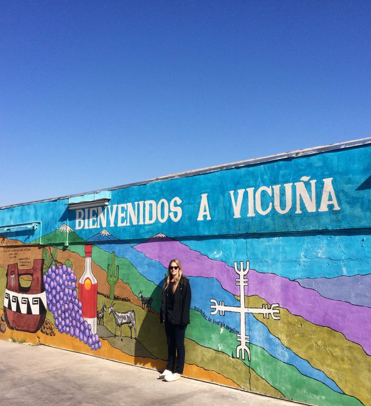 Chilling out in Vicuna, aka pisco country.  Chile// Travel// Backpacking// Tips// Things to do