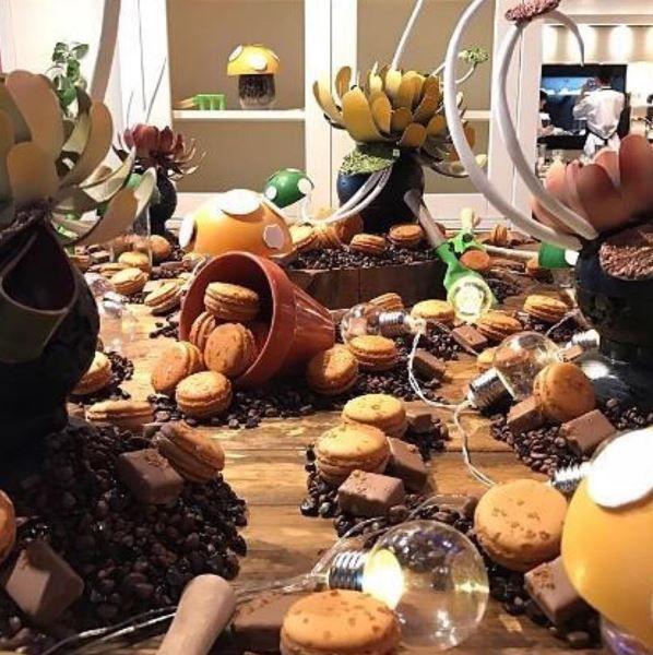 Chocolate garden P.c. @mikaylabrightling