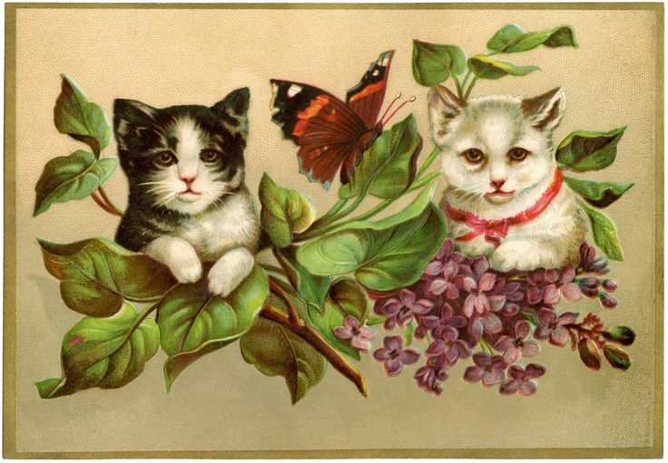 Vintage Kittens Image! - The Graphics Fairy