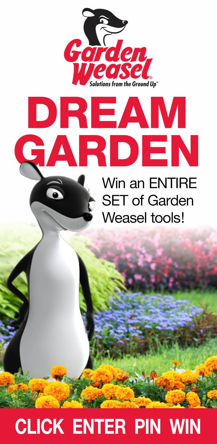 Dream Garden, Giveaway, Lawn, Bouquet, Bunch Of Flowers, Grass, Nosegay,  Bouquets