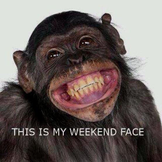funny thank god it's friday pictures | thank god it s friday