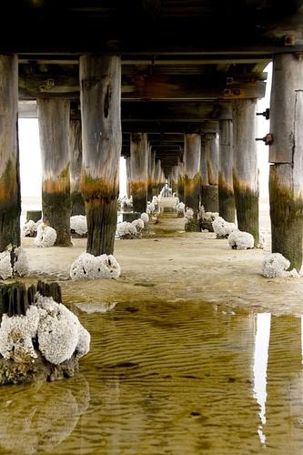 Altona Pier by woowoowoo, via Flickr