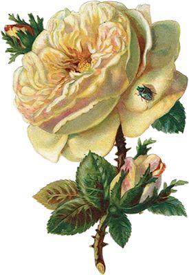 Coisinhas Etc... e Tal: Vintage Flores