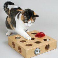 como hacer juguetes para gatos y gatitos: cajita