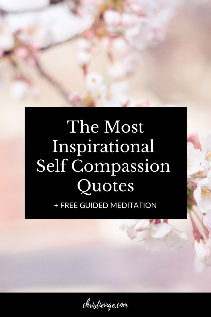 The Best Collection Of Self Compassion Quotes Self Help