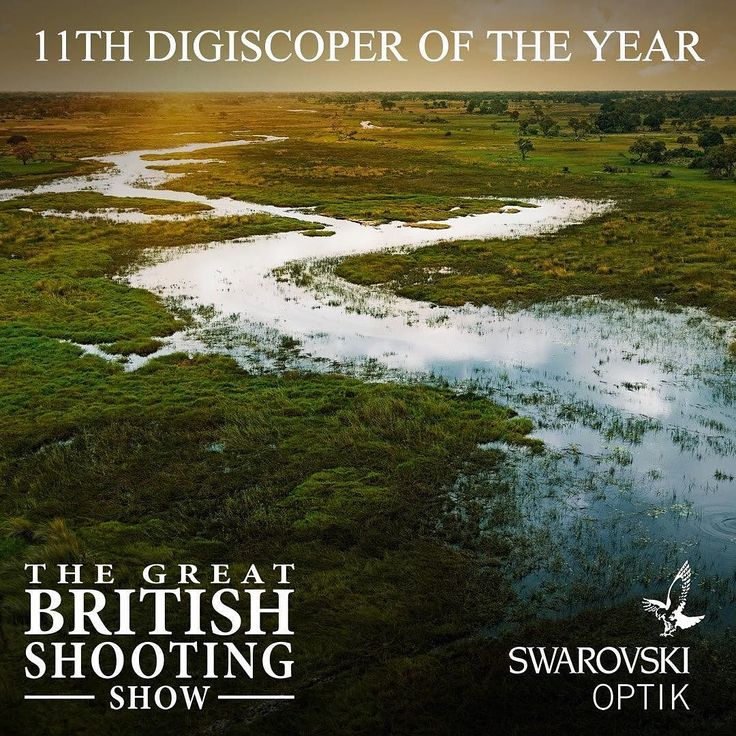 Swarovski Optik- Digiscoper of the year 2016... Full in depth article is live in Shooting News: The official magazine of The Great British Shooting Show. Fieldandrurallife.com  Swarovski Optik will be attending The Great British Shooting Show 2017. Stay up to date on Shootingshow.co.uk #Swarovski #optics #digiscoping #digiscoper #shooting #photo #adapter #competition #spottingscopes #binoculars #pro #iPhone #britishshootingshow  #shootingshow #BSS
