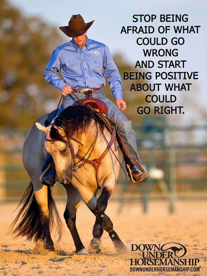 ❦ Downunder Horsemanship