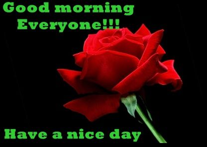 Good morning to all!!!