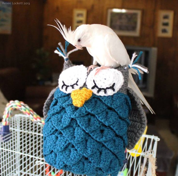 I typically do not give in to major trends, but some just capture my heart. This owl has become popular in the crochet community and in decorating for baby nurseries and kids' rooms. I could not re...