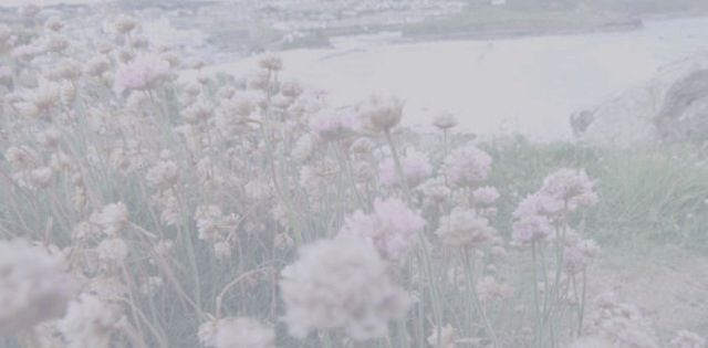104 best Twitter header/icon/backgrounds/ images on ... Pale Grunge Tumblr Headers