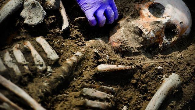 Resten van bloemen ontdekt op prehistorisch graf in Spanje   NU - Het laatste nieuws het eerst op NU.nl
