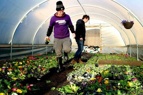 Cultivate London | arc - Business in the Community