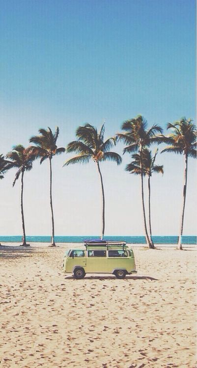 #palms x #van = #dream